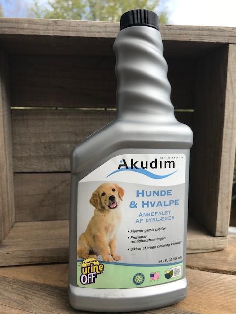 Hunde Urin