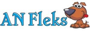 AN Fleks